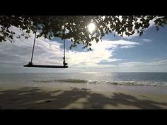 Salmo 91 SOTTO LE ALI DIVINE - YouTube Beach, Water, Relaxation, Outdoor, Dio, Angel, Youtube, Psalm 91, Gripe Water