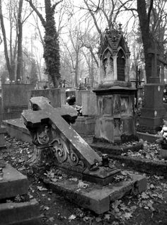 I have always liked old grave yards, and it's history.  The ones in the ground never bothered me, it's the ones still upright I don't trust. dwj