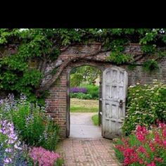 "I would love a ""Secret Garden Wall"" around my entire property!"