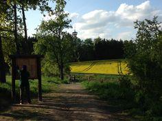 Rozhledna Špulka 2014 Czech Republic, Vineyard, Country Roads, Celestial, Sunset, Nature, Outdoor, Outdoors, Naturaleza