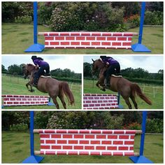Equestrian Horse/pony Show jump Fillers, Fun, Spooky, Safe, Height Adjustable & Affordable. Wall Design.