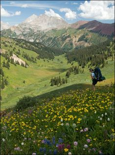 Bobby and I had the best time in Crested Butte last year!!! Cannot wait to go back!! The flowers were amazing!
