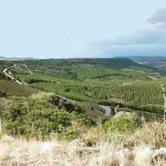 #Sardinia #cycling #climb #pranusiddi #Marmilla #6% #5km #fotoritocco #ditoclandestino