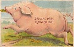 CPA EN RELIEF  CARTE GAUFREE ** EMBOSSED CARD ** COCHON ** PIG ** VARKEN  ** HONGRIE ** HUNGARIAN CARD - Pigs