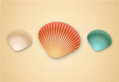 Quick Tip: Create a Simple Seashell in Adobe Illustrator