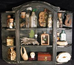 Great curiosity cabinet for sale 58 for with curiosity cabinet for. cabinet of curiosity the bakken museum. Historia Natural, Cabinet Of Curiosities, Natural Curiosities, Macabre, Shadow Box, Oeuvre D'art, Altered Art, Book Design, Halloween Decorations