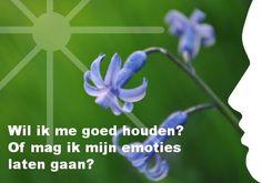 """""""Wil ik me goed houden? Of mag ik mijn emoties laten gaan?"""" Ook je eigen persoonlijke dagelijkse inspiratiekaart ontvangen? http://www.confront.nl/inspiratiekaarten/"""