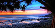 Beach Australia National Park Palms Nature