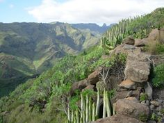 La Gomera for serious hikers!