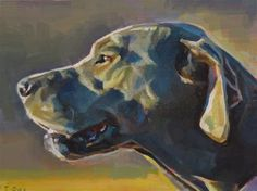 "Daily Paintworks - ""Dog in Sunlight"" - Original Fine Art for Sale - © Taryn Day"
