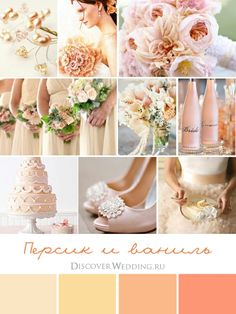 Wedding Palette Peach and Vanilla