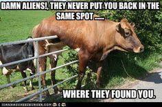 Damn aliens!