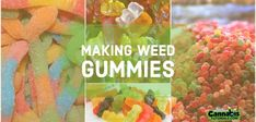 How to Make Weed Gummies Potent and Delicious Recipe Weed Recipes, Marijuana Recipes, Cannabis Edibles, Drink Recipes, How To Make Gummies, Best Edibles, Worms, Yo Yo