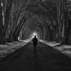 Even More Slices of Silence by Nathan Wirth, via Behance