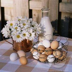 .What a beautiful bounty eggs www.backyardchickencoops.com.au