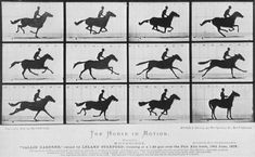 """The animation is based on Eadweard Muybridge's photography series """"The Horse In Motion."""" According to Hawkins, """"it was the birth of motion film and this project is also the first of its kind. Louis Daguerre, Digital Foto, Image Digital, Marcel Duchamp, Photo Truquée, Photo Art, Eadweard Muybridge, Site Art, New Mexico Usa"""