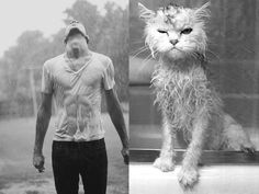 Kittens and Men. Repin by Inweddingdress.com #cute #cat #man