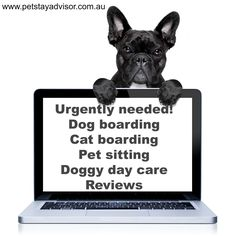 Leave review for favourite #petboarding #doggydaycare #petsitter Free showbag…