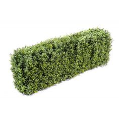 Artificial Buxus Hedge Ready Made