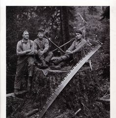 Timber was one of their many natural resources. This provided jobs cutting logs to have building materials to build the storefronts for the storekeepers. (natural and human resources)