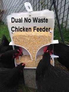 No Waste Rodent Chicken Feeders Chicken Garden, Backyard Chicken Coops, Chicken Coop Plans, Building A Chicken Coop, Diy Chicken Coop, Chickens Backyard, Chicken Tractors, Keeping Chickens, Raising Chickens