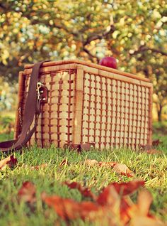 Autumn Picnic Tailgate for Two