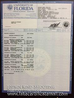 Buy a degree University of Florida degree transcript-Fake Diploma,College Fake Degree,Transcript Free Printable Certificate Templates, Certificate Of Participation Template, Certificate Of Completion Template, Birth Certificate Template, Money Template, Id Card Template, Card Templates, Letter Of Employment, High School Transcript