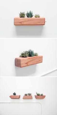 Succulents make for great indoor plants, and they're pretty low maintenance too! These planters are an easy project and makes it seem like they are floating on your walls. Check out the website for the full instructions and material list: http://www.homemade-modern.com/ep71-succulent-planter/