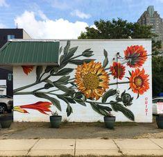 Street art by Ouizi / Louise Jones Murals Street Art, Mural Art, Wall Murals, Wall Art, Flower Mural, Flower Art, Flower Graffiti, Art Flowers, Indian Blanket Flower