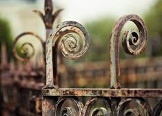 Paris Fence Photograph, Brown, Mint, Sage, Gray, Fall, Rustic Decor, Architecture Print, Paris Decor