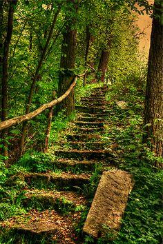 La naturaleza... hermoso...