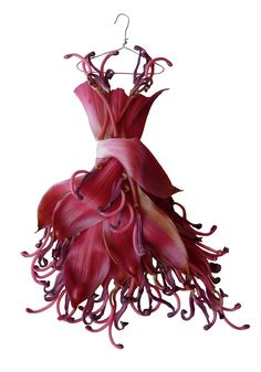 Sandra Alcorn makes miniature dresses out of petals and leaves. Fit for a fairy!