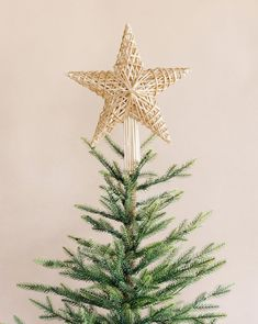 Christmas Tree Star Topper, Star Tree Topper, Holiday Tree, Xmas Tree, Christmas Diy, Christmas Trees, Diy Tree Topper, Beach Christmas, Christmas Stuff