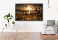 High quality photo or canvas print of a stunning and mystical sunrise in the dunes at Orewa beach in New Zealand. Order now online!