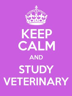 #KeepCalm and #Study #Veterinary