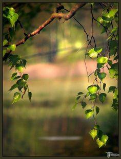 Enter Description – So Funny Epic Fails Pictures Blur Image Background, Blur Background Photography, Studio Background Images, Background Images For Editing, Photo Background Images, Background Images Wallpapers, Picsart Background, Photo Backgrounds, Nature Photography