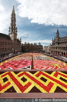 Carpet flowers, Grand Place, Brussels, Belgium