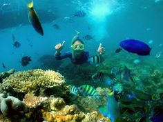 200 Vacation Packages Ideas In 2020 Vacation Packages Vacation Jepara