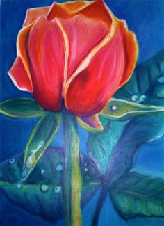 Romantic Red Rose with Dew Drops Pastel Drawing 22x30 on Etsy, $115.00