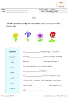 1000 images about science printable worksheets primaryleap on pinterest primary resources. Black Bedroom Furniture Sets. Home Design Ideas