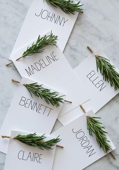 Festive table settings for green thumbs