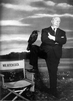 Alfred Hitchcock for The Birds, 1963 Alfred Hitchcock, Hitchcock Film, Best Director, Film Director, Classic Hollywood, Old Hollywood, The Birds Hitchcock, Kino Movie, Gif Terror