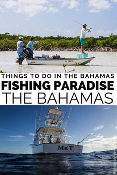 35f14c04fc3b 15 Unmissable things to do in the Bahamas