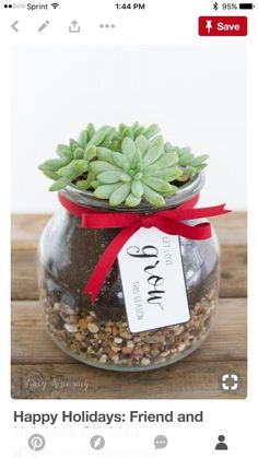 DIY Gift for the Office - DIY Succulent Gift - DIY Gift Ideas for Your Boss and Coworkers - Cheap and Quick Presents to Make for Office Parties, Secret Santa Gifts - Cool Mason Jar Ideas, Creative Gift Baskets and Easy Office Christmas Presents Office Christmas Presents, Christmas Gifts For Your Boss, Neighbor Christmas Gifts, Thoughtful Christmas Gifts, Diy Holiday Gifts, Diy Xmas Gifts For Coworkers, Goodbye Gifts For Coworkers, Office Presents, Cheap Christmas Gifts