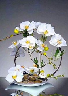 Ikebana Arrangements, Orchid Flower Arrangements, Orchid Centerpieces, Ikebana Flower Arrangement, Exotic Flowers, Faux Flowers, White Flowers, Beautiful Flowers, Deco Floral