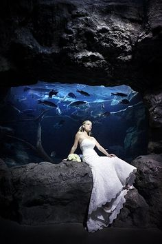 The Florida Aquarium wedding.... THIS is what I want!!!! Marry on the beach, reception at aquarium! AWESOME! MINE <3