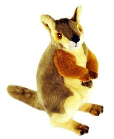 Rock Wallaby Plush Toy