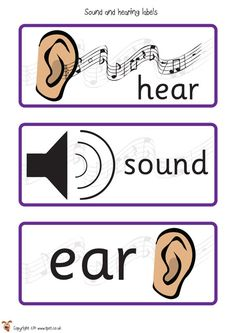 Teacher's Pet - Sound and Hearing Posters - FREE Classroom Display Resource - EYFS, KS1, KS2, sounds, hear, source, sources, ears