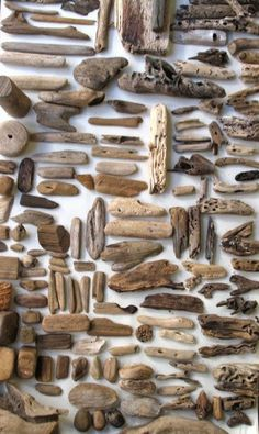 A Collection of Driftwood found on the Beaches of Madeira . Driftwood Crafts, Driftwood Mobile, Driftwood Ideas, Driftwood Jewelry, Sticks And Stones, Wabi Sabi, Event Styling, Creations, Cool Stuff
