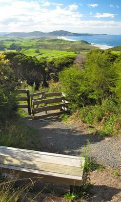 Bream head Scenic Reserve,Whangarei, Northland, New Zealand